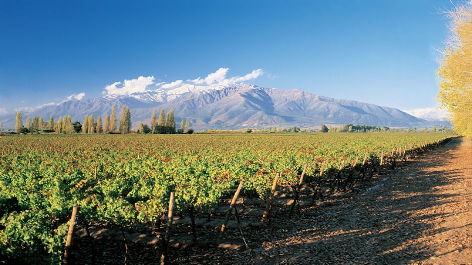 CITY TOUR + TOUR DEL VINO - Santiago, Chile